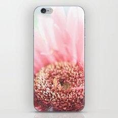 Explode iPhone & iPod Skin