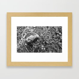 Nothing Is Important Framed Art Print