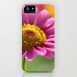 Pink summer flower 012 iPhone Case