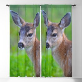 Sitka Black-Tail Fawn Blackout Curtain