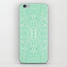 Radiate (Celadon) iPhone & iPod Skin
