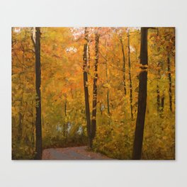Colors of Fall #3 Canvas Print