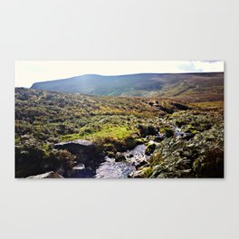 Glendalough Stream Canvas Print
