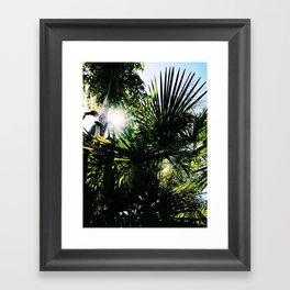 Jungle Shadows Framed Art Print
