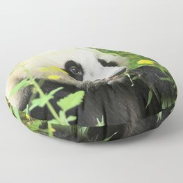 Super Cute Adult Giant Panda Bear Munching On Plants In Meadow Close Up Ultra HD Floor Pillow