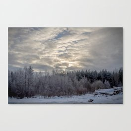 Snow tale Canvas Print