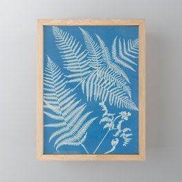 Vintage Botanical Cyanotype Framed Mini Art Print