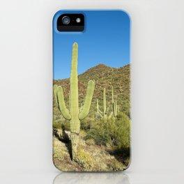Carol M Highsmith - Saguaro Cactus near Tucson, Arizona iPhone Case