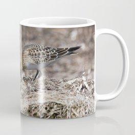 Baird on the Beach! Coffee Mug