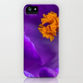 Deep purple and orange crocuses iPhone Case