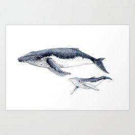 Humpback whale with calf Art Print