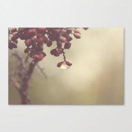 Keep Holding On Canvas Print
