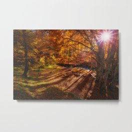 The Golden Autumn Campground (Color) Metal Print