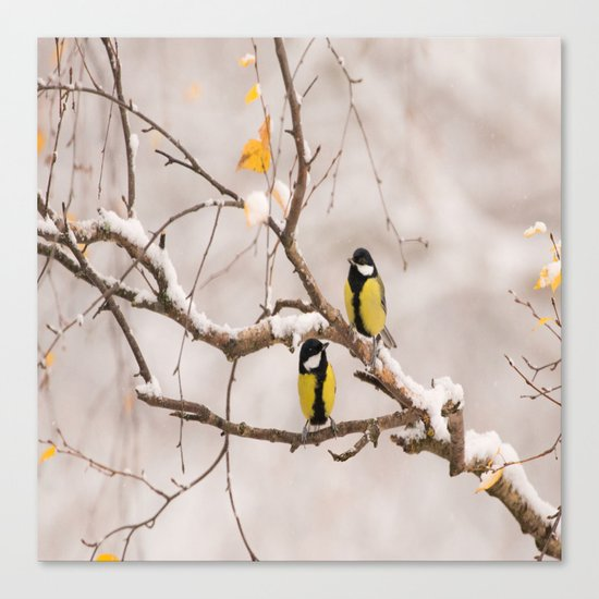Lovely Songbirds on a Snowy Branch Canvas Print