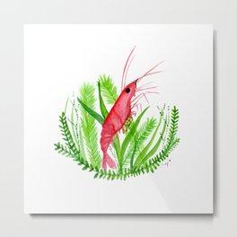 Shrimp-y Metal Print