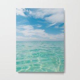 Florida Water V Metal Print