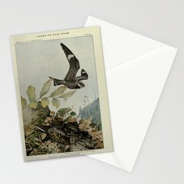 Nighthawk, Whip-poor-will14 Stationery Cards