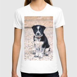 Theo Sit Stay T-shirt
