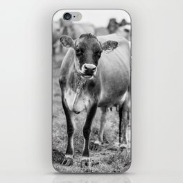 Dairy Cow Stowe Vermont Black and White Square iPhone Skin