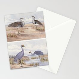 Neville W. Cayley - What Bird Is That? (1931) - Australian Bustard and Brolga Stationery Cards