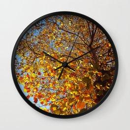 Morning Walk: Look Up Wall Clock