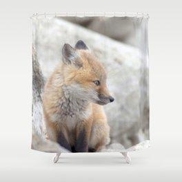 Watercolor Fox, Red Fox 61, Union Reservoir, Boulder Shower Curtain