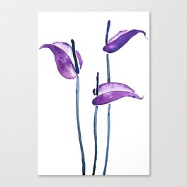 three purple flamingo flowers Canvas Print