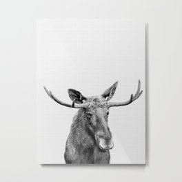 Moose print, Woodland nursery decor, nursery art, animal prints, Forest animals Metal Print