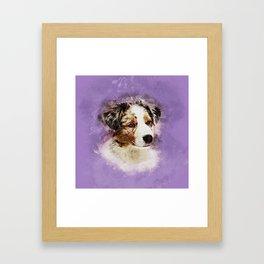 Australian Shepherd - Aussie Puppy Framed Art Print