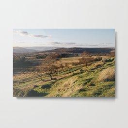 Trees on a hillside at sunset. Upper Padley, Derbyshire, UK. Metal Print
