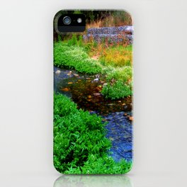 Gentle Stream at the Botanical Gardens iPhone Case