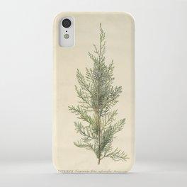 Botanical Juniper iPhone Case