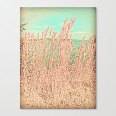 Looking Through Canvas Print