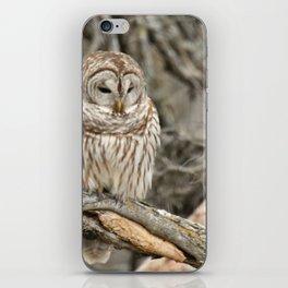 Sleepy Owl iPhone Skin