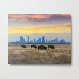 City Buffalo Metal Print