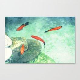 Fish watercolor III Canvas Print
