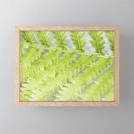 Fern 4 Framed Mini Art Print