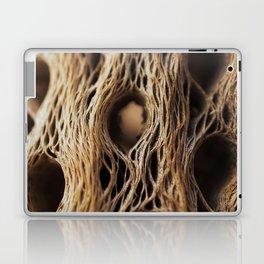Fire Cholla Skeleton Laptop & iPad Skin