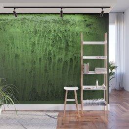 Old green window at night Wall Mural