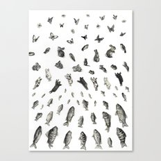 BEGGINNINGS Canvas Print
