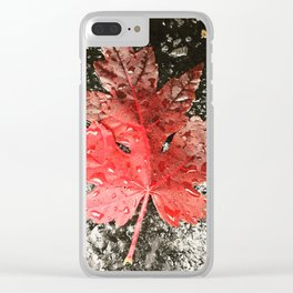 Fall in Asheville Clear iPhone Case