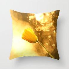 Spring Celebration Throw Pillow