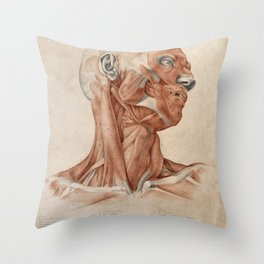 Vintage reproduction - Muscles and tendons of the head and neck: écorché figure. Red chalk and pencil drawing by A. Durelli, 1837 Throw Pillow