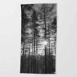Winter Pine Forest 1 Beach Towel