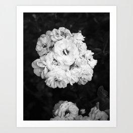 CLIMBING ROSE Art Print