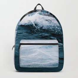 Dolphin in the Atlantic Ocean - Wildlife Photography Backpack