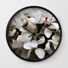 Apple Blossoms 5 Wall Clock