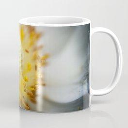 summa Coffee Mug