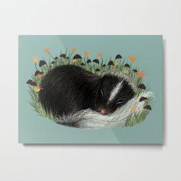 Sleeping Baby Skunk Metal Print