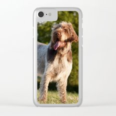Brown Roan Italian Spinone Dog Clear iPhone Case